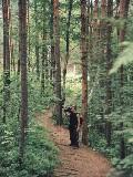 В лесу у Радонового озера